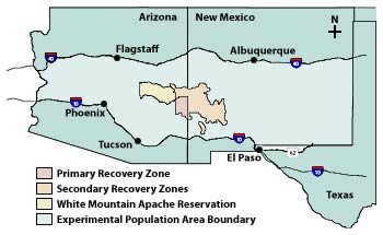 Mexican Recovery Zones