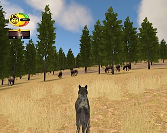 Screenshot of elk herd