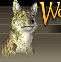 <em>WolfQuest</em>